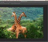 L'iterfaccia di Adobe Photoshop CC 2015
