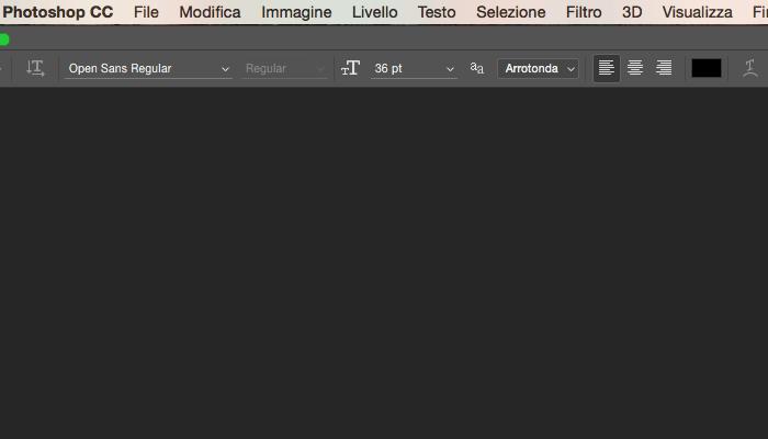 La barra delle opzioni: l'area di lavoro di Photoshop